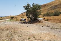 Hamat Tiberias National Park, Tiberias, Israel