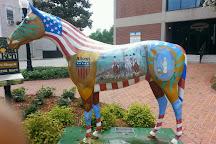Aiken Center for the Arts, Aiken, United States
