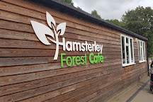 Hamsterley Forest, Hamsterley, United Kingdom