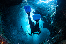 Bluedive, Playa del Carmen, Mexico