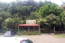 Le Tapeur, Pointe-Noire, Guadeloupe
