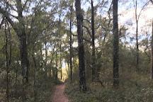 Landbridge Trailhead, Ocala, United States