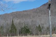 Deer Leap Trail, Rutland, United States