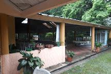 Parque Avestruz, Puerto Lopez, Colombia