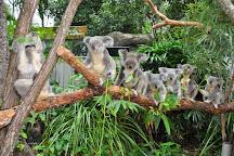 Wild life Hamilton Island, Hamilton Island, Australia