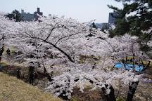 Iwate Park (Koen), Morioka, Japan