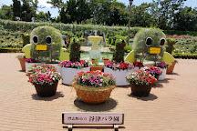 Yatsu Rose Garden, Narashino, Japan