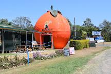 Gayndah's Big Orange, Gayndah, Australia