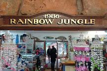 Rainbow Jungle, Kalbarri, Australia