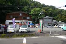 Oyasukyo Daifunto, Yuzawa, Japan