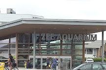 Zee Aquarium, Bergen aan Zee, The Netherlands