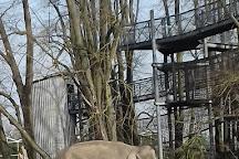 ZOO Planckendael, Mechelen, Belgium