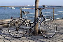 Rent Bike Infinity, Arrecife, Spain