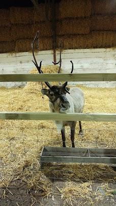 Appleton Christmas Barn oxford