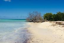 Grand Cul-de-Sac Marin, Basse-Terre, Guadeloupe