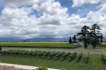 Marlborough Wine Tours, Blenheim, New Zealand