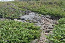 Jewell Trail, Mount Washington, United States