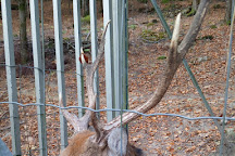 Parc Animalier de Fougerolles - Saint-Valbert, Fougerolles, France