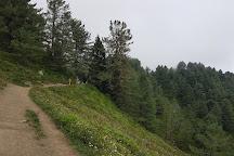 Mukshpuri Peak, Nathia Gali, Pakistan