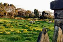 Caldy Hills, West Kirby, United Kingdom