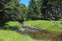 Waharau Regional Park, Whakatiwai, New Zealand