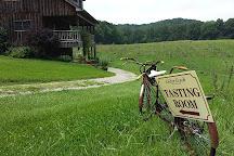 Cedar Creek Vineyards, Somerset, United States