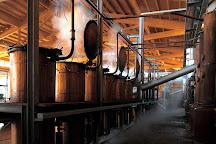 Nonino Distillatori, Percoto, Italy