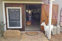 Klein River Cheese, Stanford, South Africa