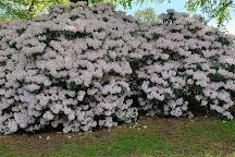 Rhododendron Park, Bronderslev, Denmark