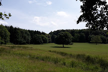 Wildwald Vosswinkel, Arnsberg, Germany