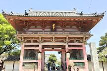 Fujii-dera Kannon Temple, Fujiidera, Japan