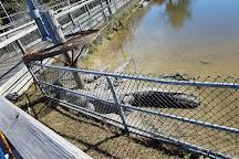 Alligator Adventure, North Myrtle Beach, United States
