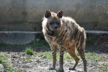 Zoo du Bois d'Attilly, Ferolles-Attilly, France