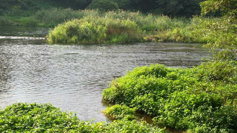 柿田川湧水駐車場