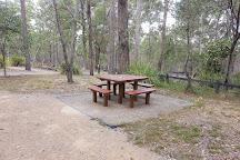 Venman Bushland National Park, Mount Cotton, Australia