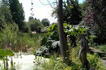 Town Tree Nature Garden, Martock, United Kingdom