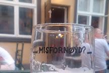 Misfornoyelsesbar, Oslo, Norway