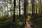 Paijatsalo Trail