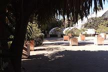 Jardin Botanico, Valencia, Spain
