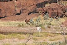Finke Gorge National Park, Alice Springs, Australia