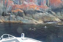 East Coast Cruises, Hobart, Australia