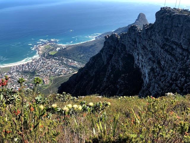 Hike Table Mountain