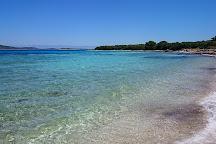 Speedboat Zadar, Zadar, Croatia