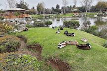 Jardin del Corazon, La Serena, Chile