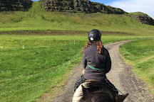 Riding Tours South Iceland, Fludir, Iceland