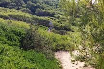 Parco Naturale Regionale di Porto Selvaggio, Nardo, Italy