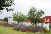 Harbor View Nursery & Lavender Farm, Traverse City, United States