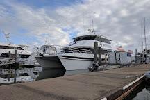 Poseidon Outer Reef Cruises, Port Douglas, Australia