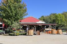 Shelburne Orchards, Shelburne, United States