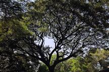 Koregaon Park, Pune, India